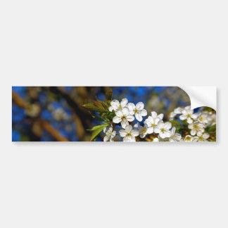 Flor del verano pegatina para auto