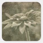 Flor del vintage pegatina cuadrada
