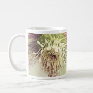 Flor delicado del Hellebore Taza De Café