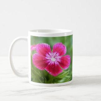Flor dulce rosado fragante de Guillermo Tazas De Café