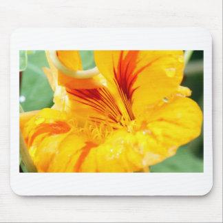 Flor en amarillo alfombrilla de raton