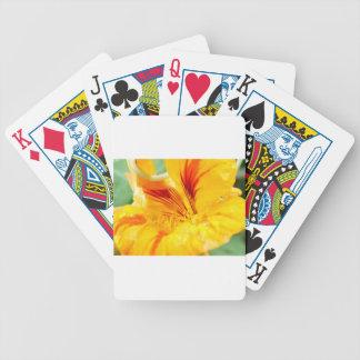 Flor en amarillo baraja de cartas