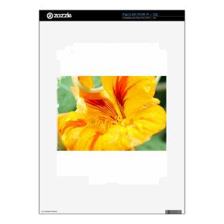 Flor en amarillo calcomanía para el iPad 2