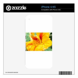 Flor en amarillo calcomanía para iPhone 4S
