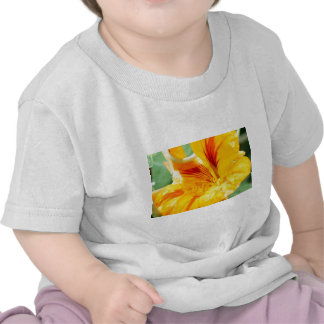 Flor en amarillo camisetas
