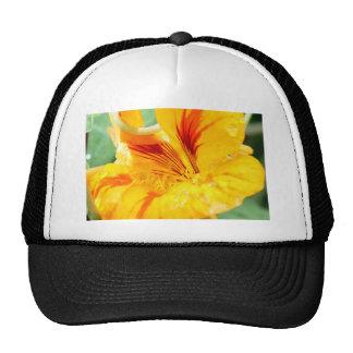 Flor en amarillo gorras de camionero