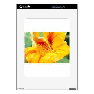 Flor en amarillo iPad skin