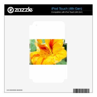 Flor en amarillo iPod touch 4G skins