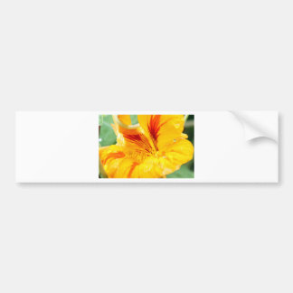 Flor en amarillo pegatina de parachoque
