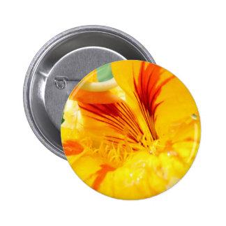 Flor en amarillo pins