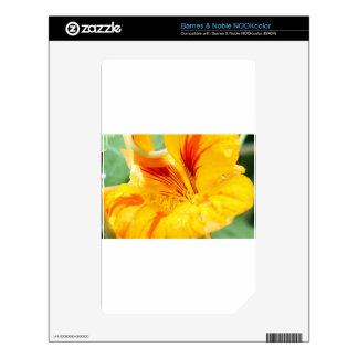 Flor en amarillo skins para NOOK color