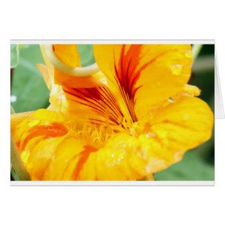 Flor en amarillo tarjeta