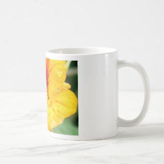 Flor en amarillo taza