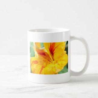 Flor en amarillo tazas