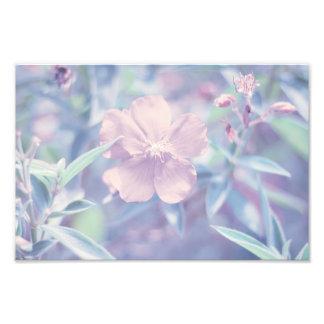 Flor en colores pastel cojinete