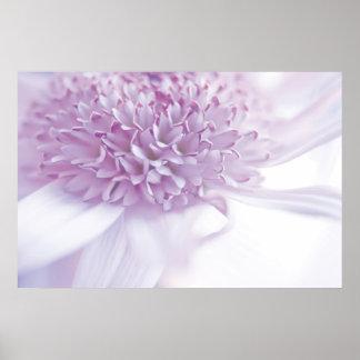 Flor en colores pastel de la lavanda impresiones