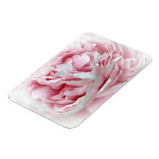 Flor en colores pastel imán foto rectangular