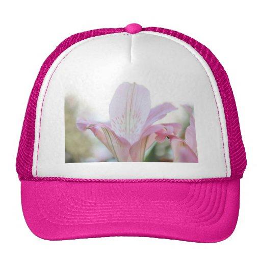 Flor en colores pastel rosada bonita gorro de camionero