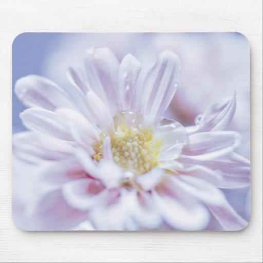Flor en colores pastel suave tapete de ratón