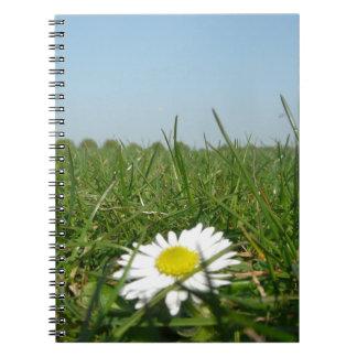 Flor en la tierra cuaderno