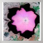 flor en rosa impresiones