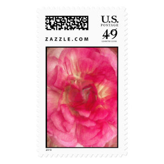 Flor en rosa sellos