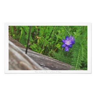 """""""Flor entre la madera,"""" decoración floral Fotografía"""