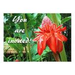 Flor exótica color de rosa del Caribe roja Anuncio Personalizado