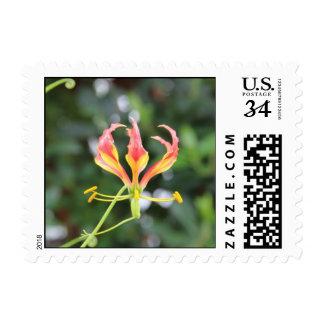 Flor exótica sellos