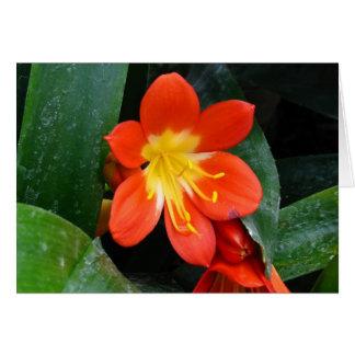 Flor exótica tarjetón