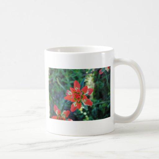 Flor exótica taza clásica