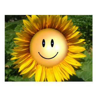 Flor feliz de la sol tarjeta postal