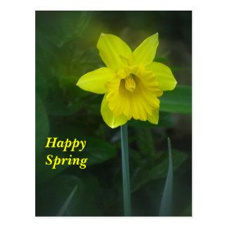 Flor feliz del narciso de la primavera tarjeta postal