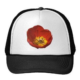 Flor flor tulipán gorros bordados