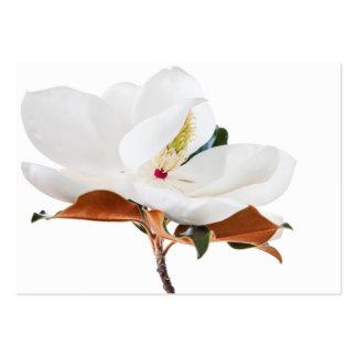 Flor floral de las magnolias blancas de la flor de tarjetas de visita grandes