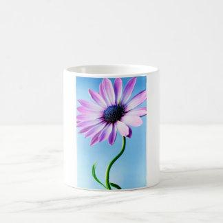 Flor floral de las margaritas de la flor de la taza clásica