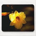 Flor floral del amarillo del Cojín-Preety del rató Alfombrillas De Ratón