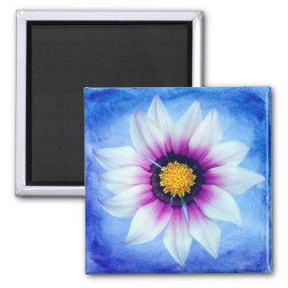 Flor floral del primer de la flor de la margarita imán cuadrado