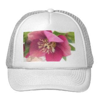 Flor floreciente del Hellebore Gorros Bordados
