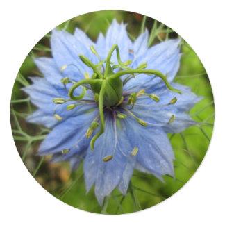 """Flor floreciente del verde azul de Nigella Invitación 5.25"""" X 5.25"""""""