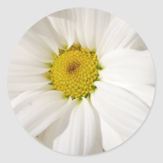 Flor frecuencia intermedia 124 pegatina redonda
