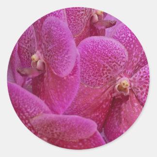 Flor frecuencia intermedia 124 pegatinas redondas