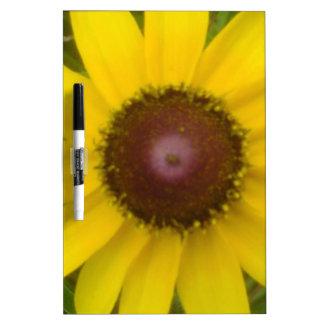 Flor frecuencia intermedia 161 tablero blanco