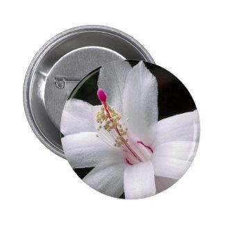 Flor frecuencia intermedia 172 pin