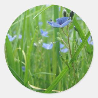 Flor frecuencia intermedia 193 etiqueta redonda