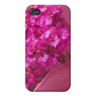 Flor frecuencia intermedia 195 iPhone 4/4S fundas