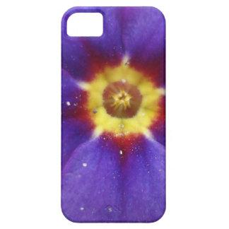 Flor frecuencia intermedia 195 iPhone 5 carcasas