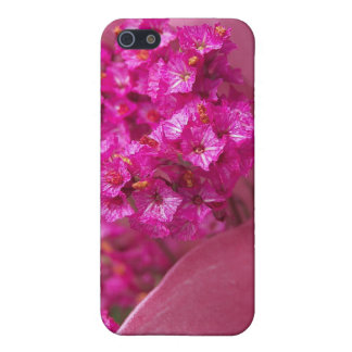 Flor frecuencia intermedia 195 iPhone 5 fundas