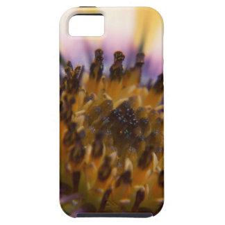Flor frecuencia intermedia 212 iPhone 5 Case-Mate cárcasa