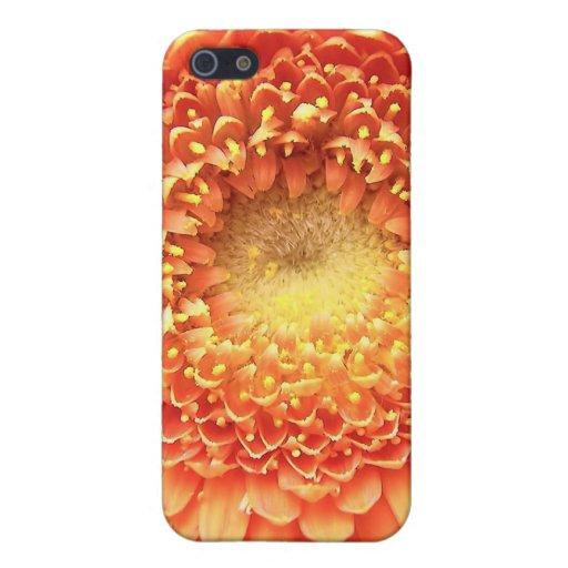 Flor frecuencia intermedia 222 iPhone 5 cárcasas